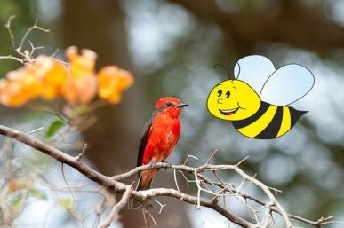 abeja y pajarito