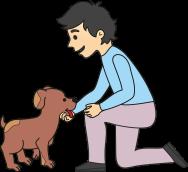 cachorro 7 co