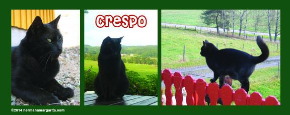 Crespo03