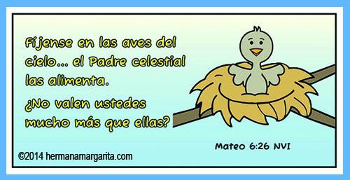 Mateo 6_26