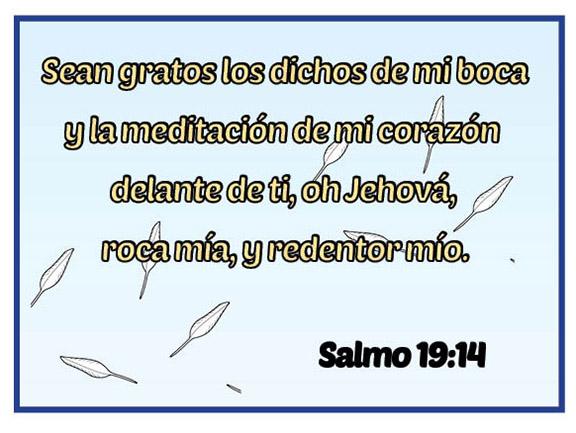 Salmo19_14